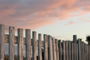 1396663_vintage_fence__3