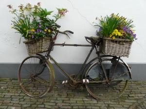 zutphen-1386366-m