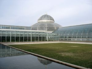 Hodowla roślin w szklarniach