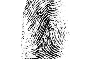 Detektyw na tropie przestępcy